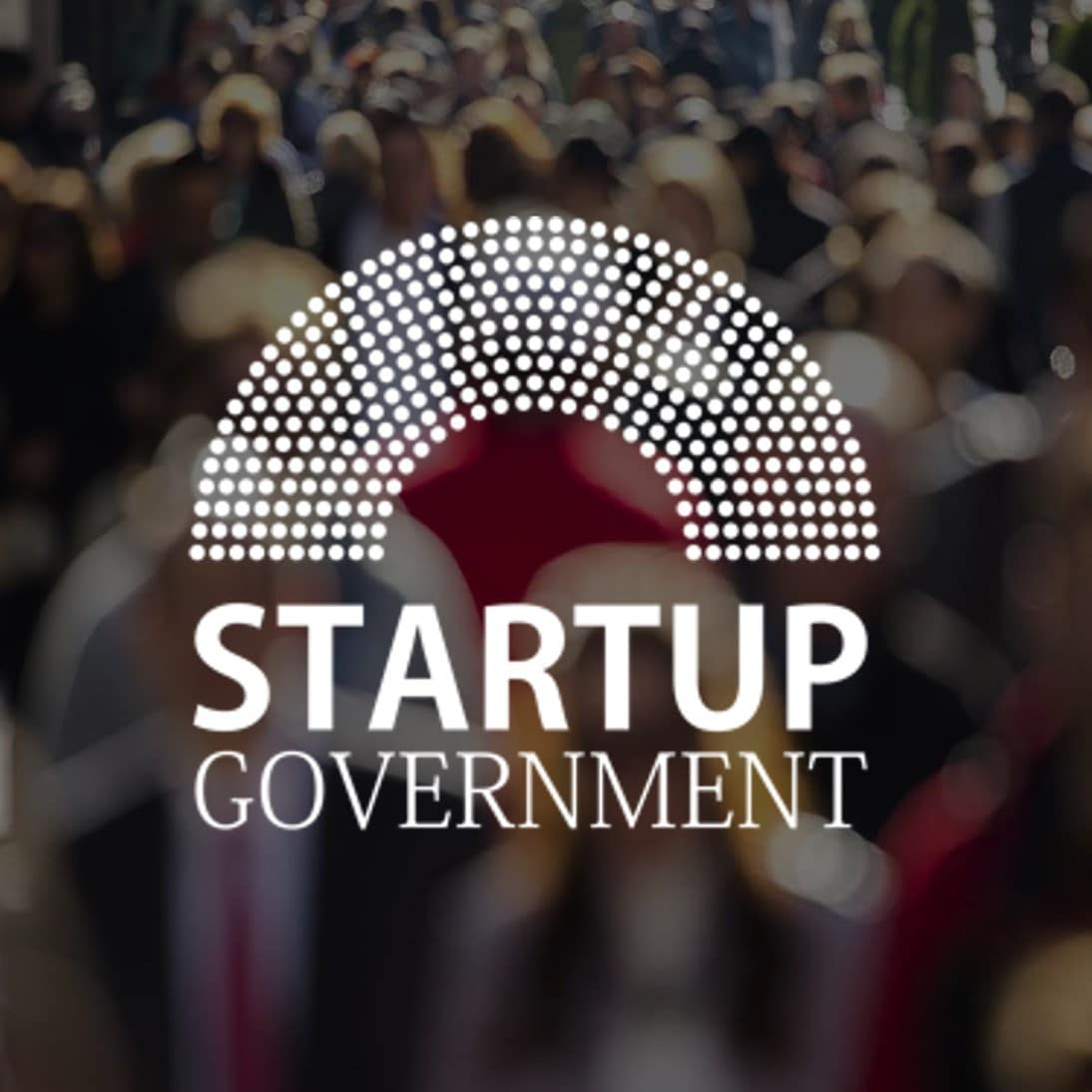 Startup Government